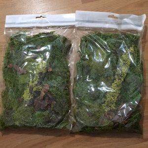 Moss kit, lot of two, Reindeer moss by Ashland